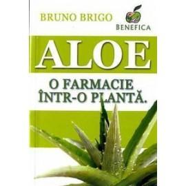 aloe-o-farmacie-intr-o-planta
