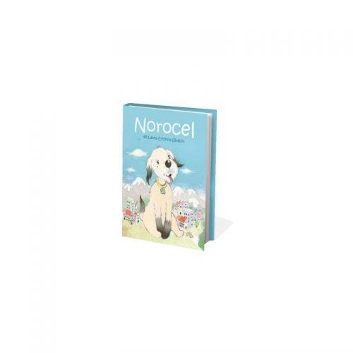 Norocel - A4 (ed. tiparita)