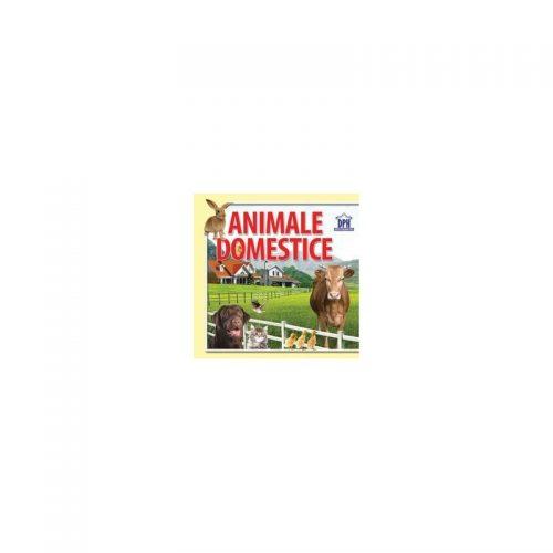 Animale domestice: 14 imagini cu animale domestice (carte evantai)
