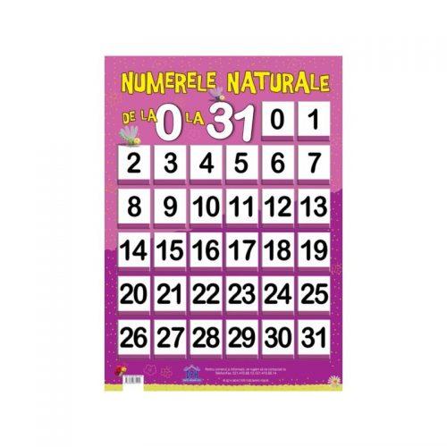 Numere naturale de la 0 la 31 (ed. tiparita)