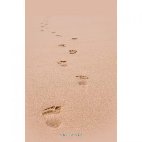 Urme pe nisip (ed. tiparita)