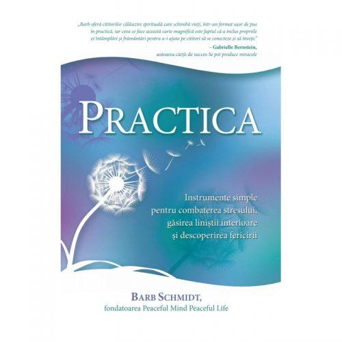 Practica - Instrumente simple pentru combaterea stresului (ed. tiparita)