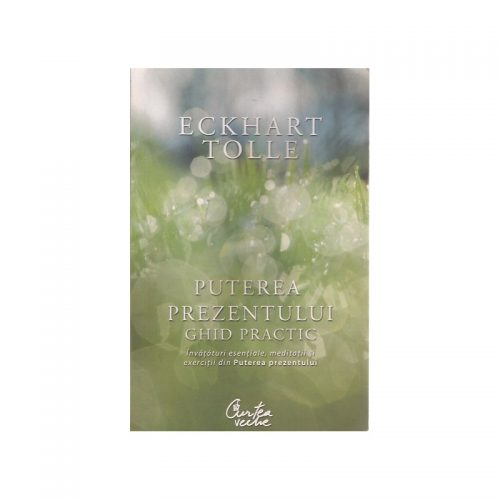 Puterea prezentului: Ghid practic - invataturi esentiale, meditatii si exercitii (ed. tiparita)