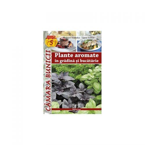 Plante aromate in gradinita si bucutarie