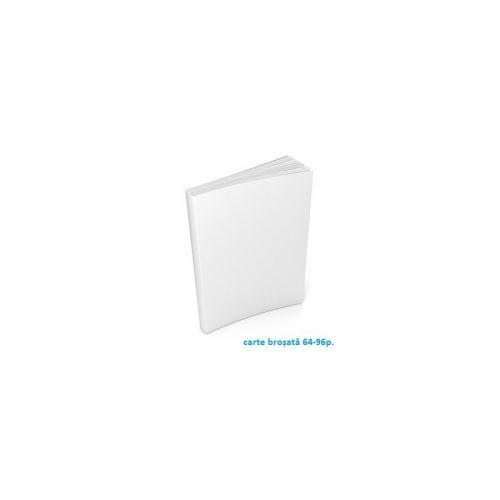 Serviciu publicare eBook (servicii publicare carte electronica)