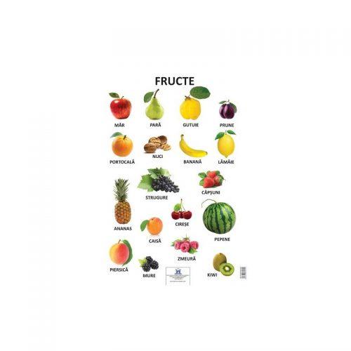 Plansa fructe (ed. tiparita)